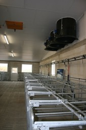 6-5-3 chimney fans in gestation barn